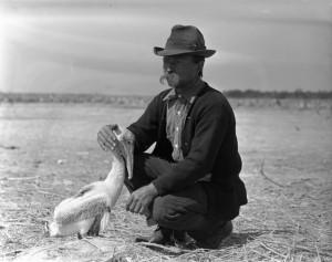 Kroegel&Pelican